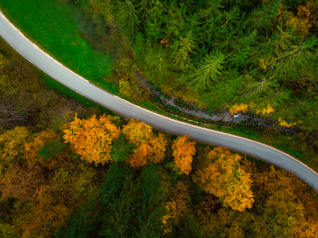 Autumnal forest, top down drone view. Stock Photo