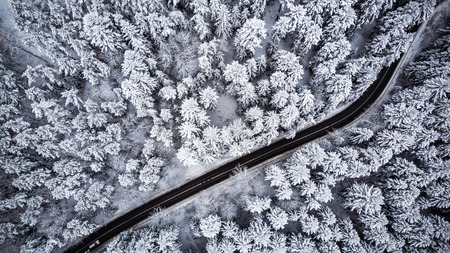 Car drive  trough winter forest,aerial view.
