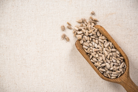 Sunflower seeds on wooden spoon, superfood. Copy space on kitchen cloth with spotlight.