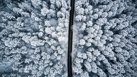 Snow covered trees and road line, aerial drone photo.