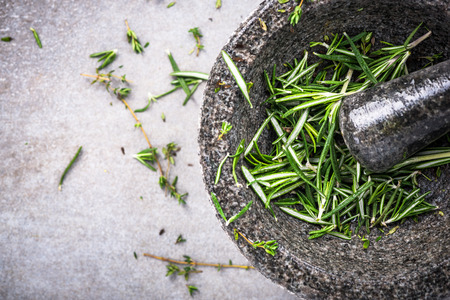 Fresh organic rosemary in concrete pestle or mortar.