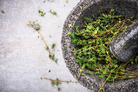 Fresh organic thyme in concrete pestle or mortar. Stock Photo