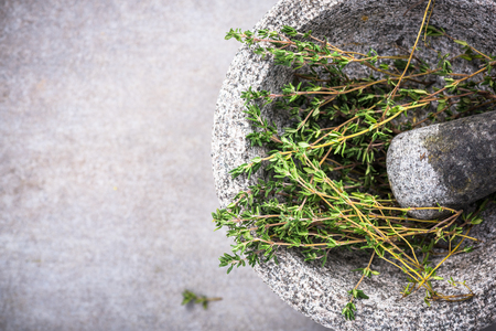 Fresh organic thyme in concrete pestle or mortar. Zdjęcie Seryjne