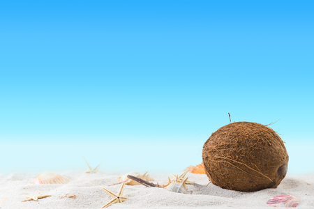 relaxation on summer exotic sandy beach concept. Blurred sky in cakground. Stock Photo