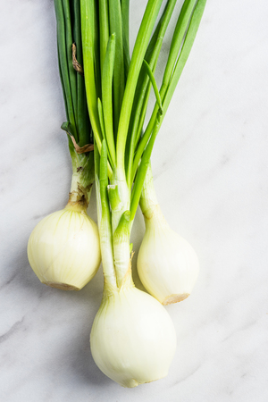 Fresh spring onions on marble table. Stock Photo