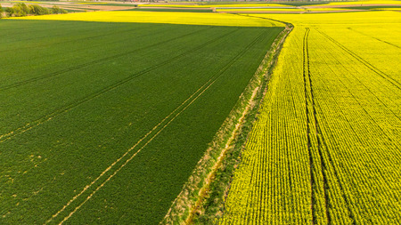 Colorful patterns in crop fields at farmland, aerial view, drone photo. 스톡 콘텐츠