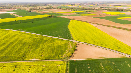 Colorful agricultural fields at spring, aerial drone view. Stock Photo