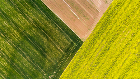 Colorful patterns in crop fields at farmland, aerial view, drone photo. Banco de Imagens