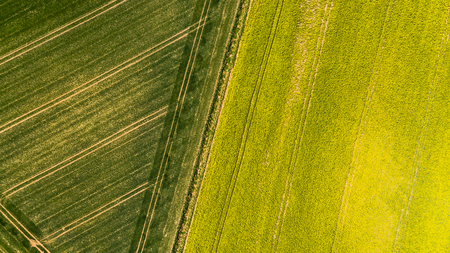 Colorful patterns in crop fields at farmland, aerial view, drone photo. Imagens