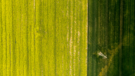 Colorful patterns in crop fields at farmland, aerial view, drone photo. Stock Photo