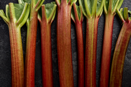 Rhubarb steams on dark background, close up view.