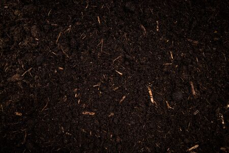 Garden Soil , Dark Cultivated Turf Soil , Gardening and Farming Concept, Background.