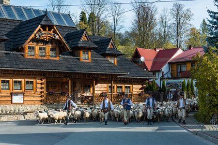 SZCZAWNICA,POLAND - OCTOBER 12, 2019: Carpathian Shepherds Walking With Sheeps Trough Village in Szczawnica. Traditional Day Redyk Celebration.