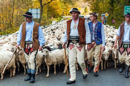 SZCZAWNICA,POLAND - OCTOBER 12, 2019: Traditional Carpathian Shepherds Leading Sheeps From Grazing in Mountains to Villages for Winter. Celebrating Traditional