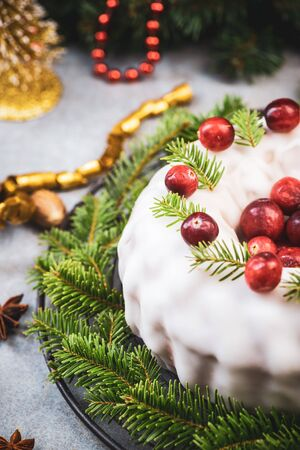 Christmas Festive Fruit Cake with Red Cranberry Decoration.