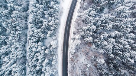 Winding Lane Road in Winter Woodland. Top Down Aerial View.