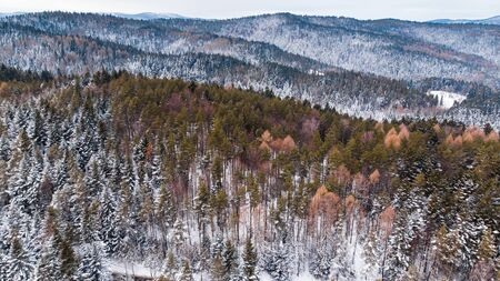 Woodlands on Hills Covered in Fresh Snow. Aerial Drone View. Reklamní fotografie