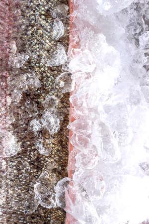 Fresh Salmon Fish in Skin Fillet on Ice.