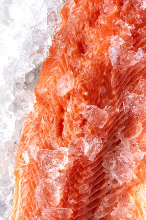 Salmon Fillet Raw Meat on Ice. Food Background.