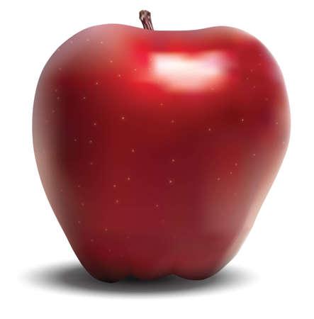 manzana roja: manzana Vectores