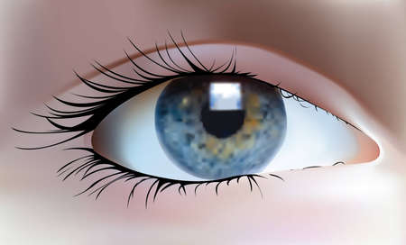 eye Illustration