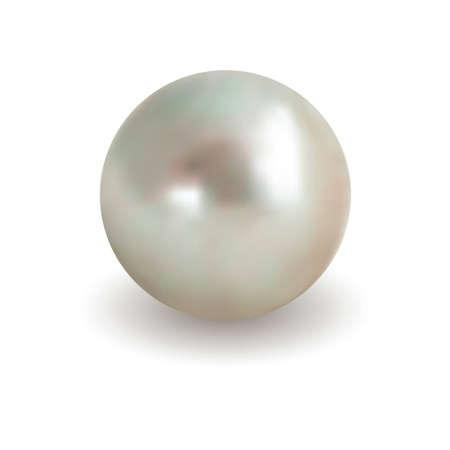 perlas: Aislado blanco perla