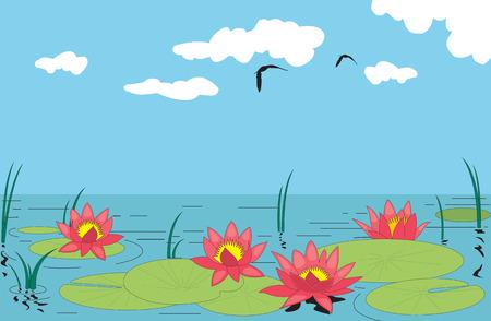 Hermoso agua Lilly. Ilustración vectorial