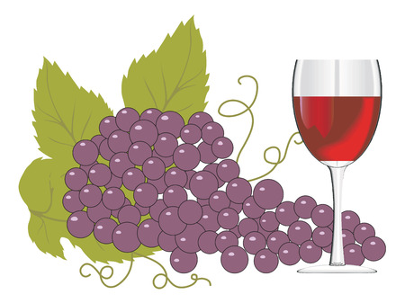 Wine glass with a bunch of grapes. Vector illustration