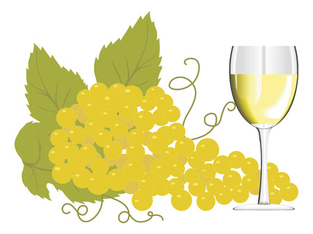 Wine glass with a bunch of grapes. Vector illustration Stock Vector - 2860045