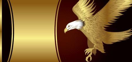 aguila real: �guila de oro