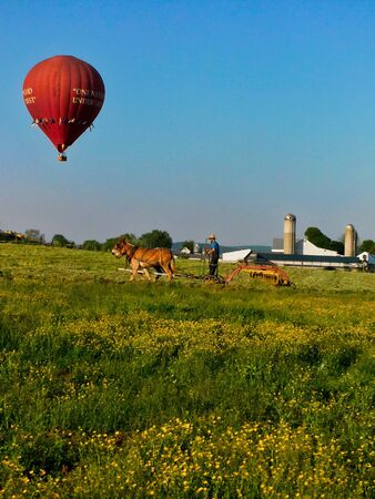 Amish man plows a field with a team of mules, while a hot air balloon hovers above, southeastern Pennsylvania Banco de Imagens