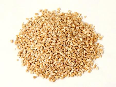 pearl barley: barley Stock Photo