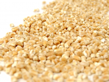 pearl barley:         Pearl Barley   Stock Photo