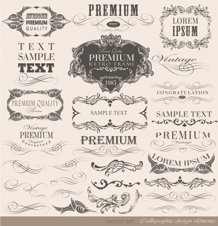 calligraphic design elements and page decoration vector set Vector