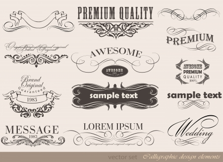 decoration elements: Old style frames and labels Retro floral ornaments Vintage  borders and other elements