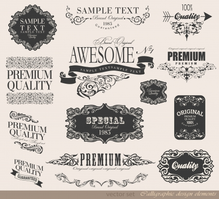 calligraphic design elements and page decoration/ vector set Stock Vector - 23719266