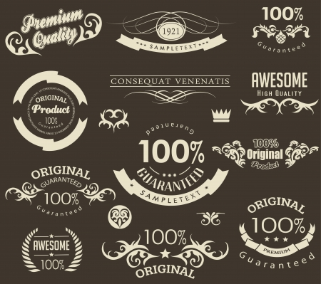 calligraphic design elements and page decoration vector set