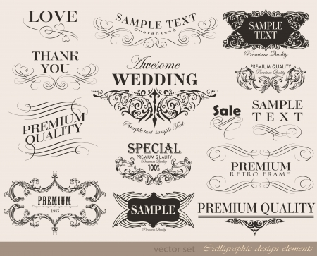 Vintage frame calligraphic design elements and page decoration vector set Vector