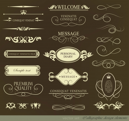Vector illustration of calligraphic elements and page decoration retro vintage frame Vector
