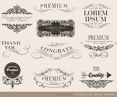 page decoration: calligraphic design elements and page decoration vector set