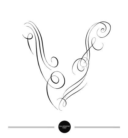typography signature: Letra caligr�fica. Resumen de la fuente. Los elementos de dise�o pueden utilizarse para la invitaci�n, felicitaci�n. Ilustraci�n digital Vectores