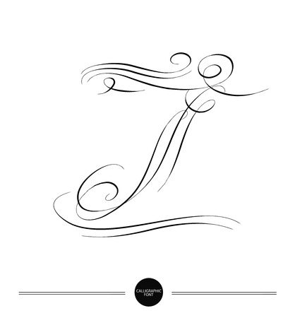 Calligraphic letter. Abstract font. Design elements can be used for invitation, congratulation. Digital illustration Illustration