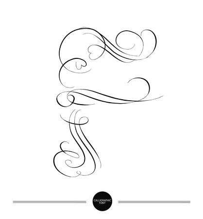 decorative lines: Calligraphic letter. Abstract font. Design elements can be used for invitation, congratulation. Digital illustration Illustration