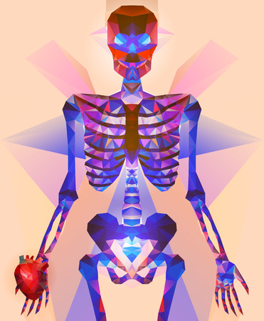 polygonal: Polygonal skeleton Illustration