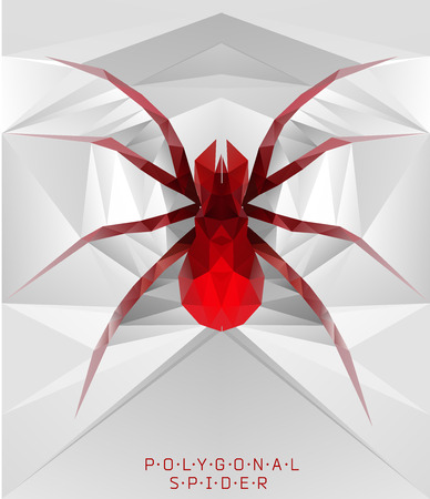 spider: Polygonal spider. Geometric  illustration. Polygonal creative poster. low poly illustration