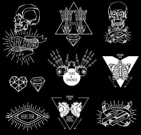 squelette: Ensemble d'étiquettes à la main dessiner squelette humain et de l'anatomie