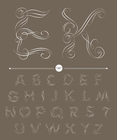 typography signature: Alfabeto caligr�fico. Los elementos de dise�o pueden utilizarse para la invitaci�n, felicitaci�n. Ilustraci�n digital Vectores