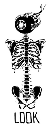 clavicle: Human skeleton. Creative quote background. Digital illustration