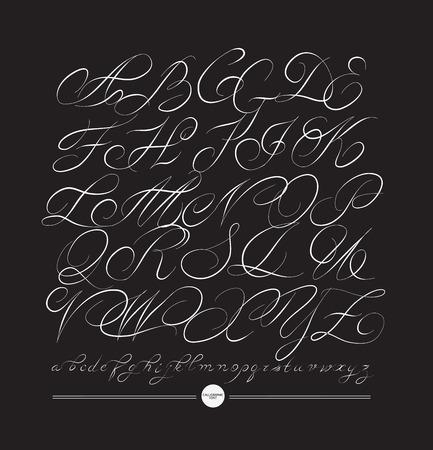 typography signature: Calligraphic alphabet. Design elements can be used for invitation, congratulation. Digital illustration