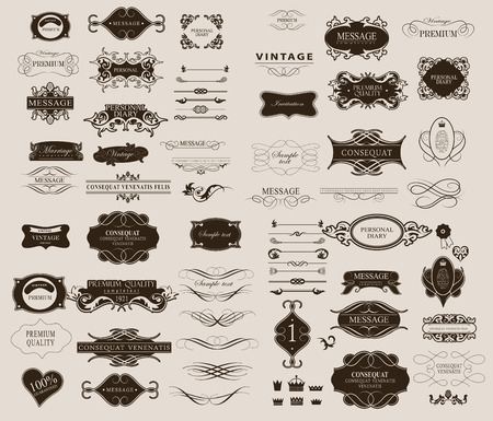 vintage: Állítsa be a kalligrafikus elemek tervezése használható meghívás, gratuláció